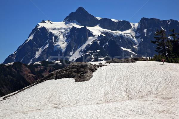 Snowfields Artist Point Mount Shuksan Washington State Stock photo © billperry