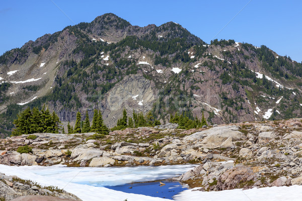 Red Mountains Small Blue Snow Pool Artist Point Washington State Stock photo © billperry