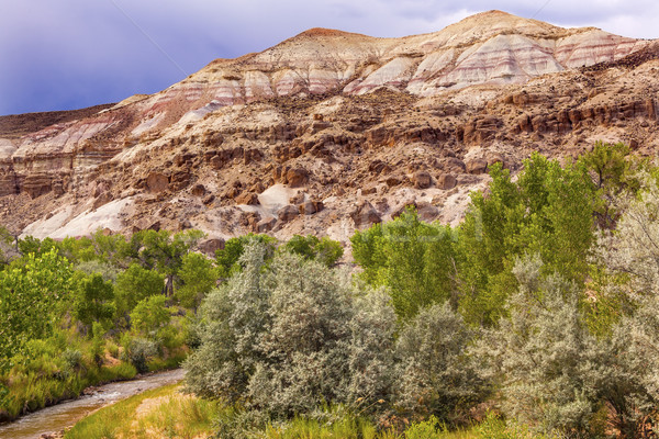 White Sandstone Mountain Fremont River Capitol Reef National Par Stock photo © billperry