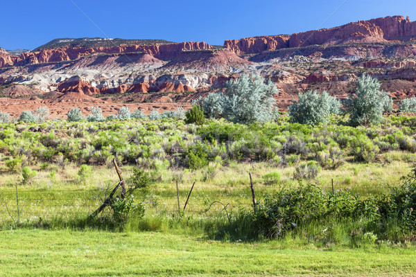 Red Rock Sandstone Mountains Green Grass NearCapitol Reef  Natio Stock photo © billperry