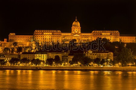 Buda Castle Danube River Night Budapest Hungary Stock photo © billperry