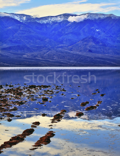 Badwater Death Valley National Park California Stock photo © billperry