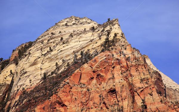Sentinelle tour canyon parc Utah sud-ouest Photo stock © billperry