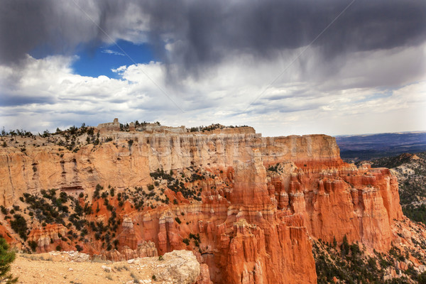 Rainy Storm Hoodoos Bryce Point Bryce Canyon National Park Utah  Stock photo © billperry