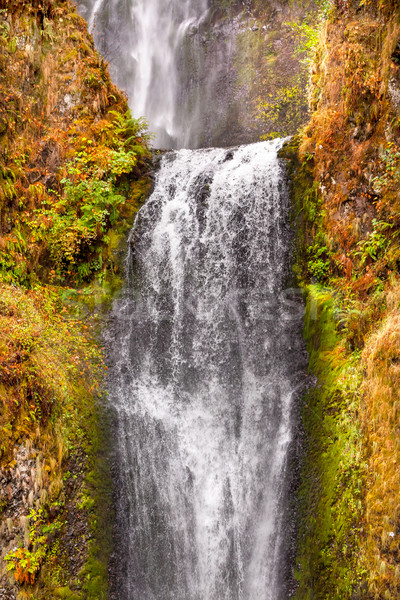 Multnomah Falls Waterfall Columbia River Gorge Oregon Pacific No Stock photo © billperry