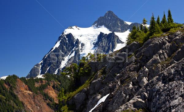 Mount Shuksan Close Up Evergreens Artist Point Washington State Stock photo © billperry