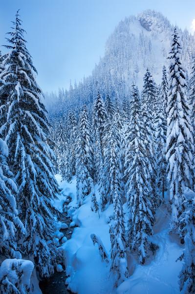 Jég kék folyam hó hegycsúcs passz Stock fotó © billperry