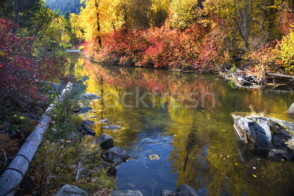 Fall Colors Rocks Wenatchee River Stevens Pass Leavenworth Washi Stock photo © billperry