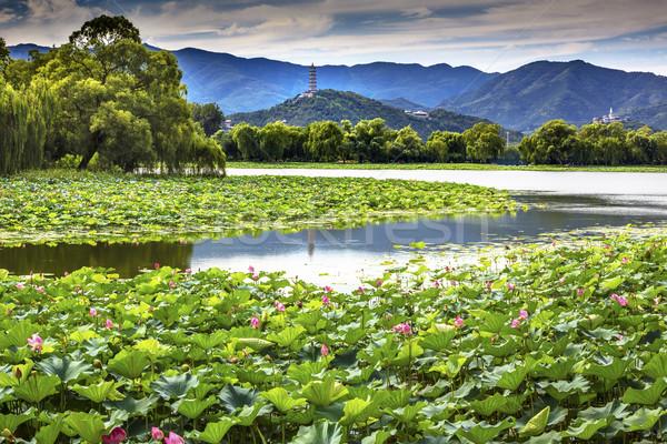 Yue Feng Pagoda Lotus Garden Reflection Summer Palace Beijing, C Stock photo © billperry