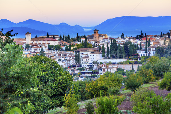 Granada Cityscape Churches Andalusia Spain from Oilve Gardens Stock photo © billperry