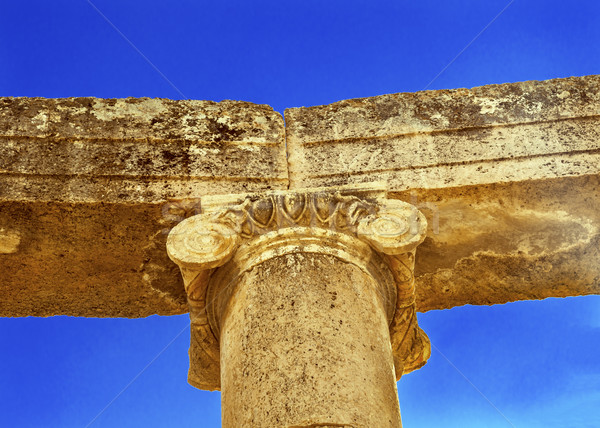 Ionic Column Close Oval Plaza Ancient Roman City Jerash Jordan Stock photo © billperry