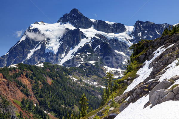 Hiking Snowfields Artist Point Glaciers Mount Shuksan Washington Stock photo © billperry