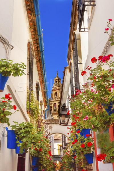 Kwiat ulicy wieża Hiszpania starych dzwon Zdjęcia stock © billperry