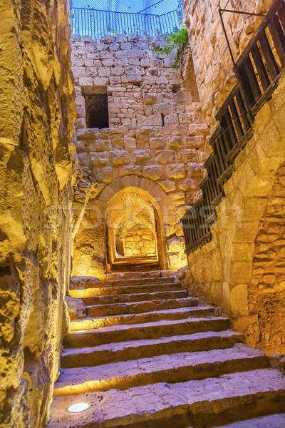 древних арабский крепость замок Иордания борьбе Сток-фото © billperry