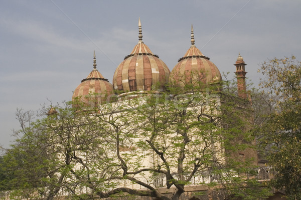Bâtiments Delhi Inde bleu Voyage Asie Photo stock © billperry