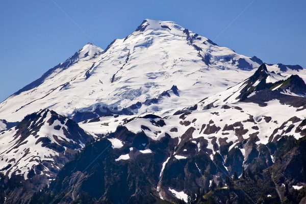 Mount Baker Closeup from Artist Point Washington State Stock photo © billperry