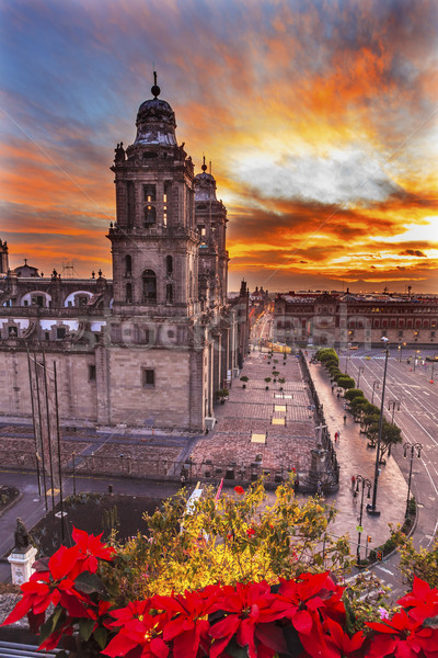 Metropolitan Cathedral Christmas Zocalo Mexico City Sunrise Stock photo © billperry