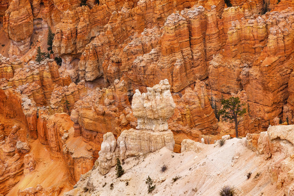 White Orange Hoodoos Bryce Point Bryce Canyon National Park Utah Stock photo © billperry