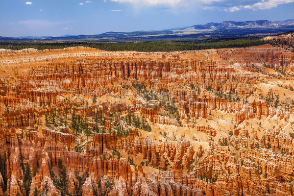 Amphitheater Hoodoos Inspiration Point Bryce Canyon National Par Stock photo © billperry
