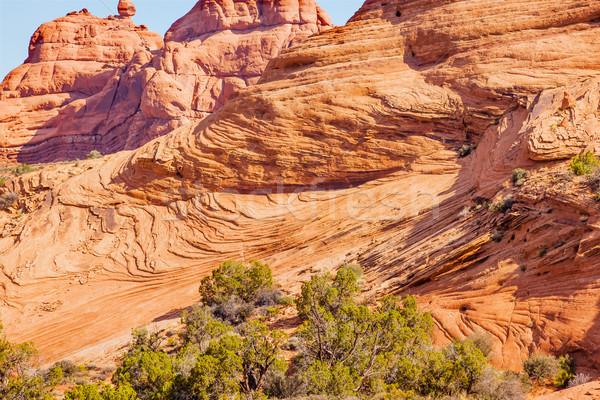砂岩 岩 層 庭園 公園 ストックフォト © billperry