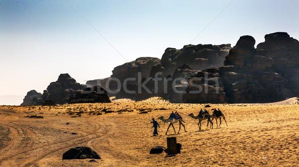 Верблюды желтый песчаная дюна долины луна ром Сток-фото © billperry