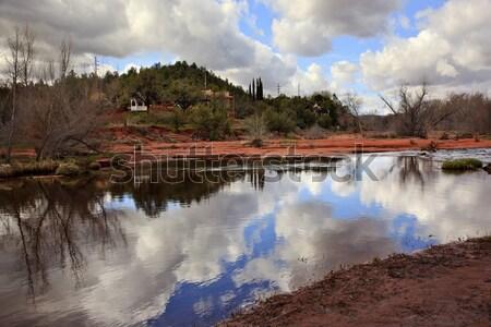 Roble arroyo reflexión Arizona justo tiempo Foto stock © billperry