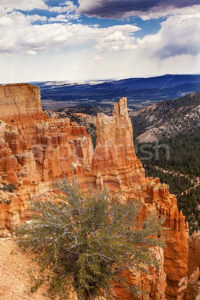 Hoodoos Bryce Point Bryce Canyon National Park Utah  Stock photo © billperry