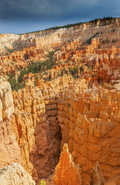 Hikers Walking Among Hoodoos  Bryce Point Bryce Canyon National  Stock photo © billperry