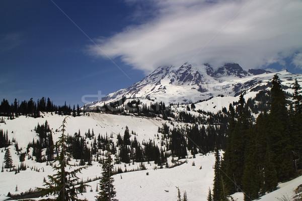 Paraíso posada parque Washington forestales montana Foto stock © billperry