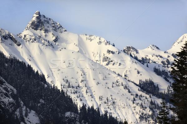 Kendall Peak Snow Mountain Snoqualme Pass Washington Stock photo © billperry