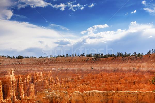 Anfiteatro ponto desfiladeiro parque Utah natureza Foto stock © billperry