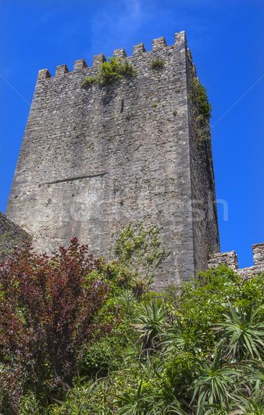 Stok fotoğraf: Kale · kule · duvarlar · Portekiz · ortaçağ · kasaba