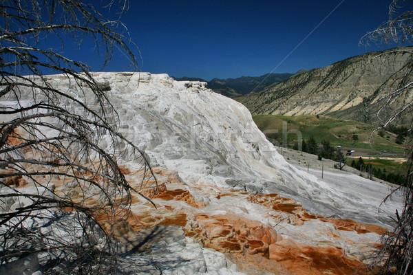 Mammoth Hot Springs Lower Terrace Yellowstone  Stock photo © billperry