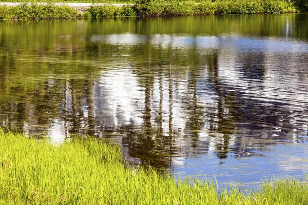 Picture Lake Abstract Mount Shuksan Washington USA Stock photo © billperry
