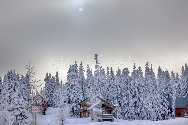 Sun Fog Snow Covered Evergreen Trees Wood Bulidngs at Snoqualme  Stock photo © billperry