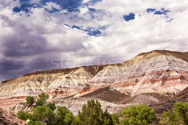 Storm Clouds Red White Sandstone Mountains Capitol Reef National Stock photo © billperry