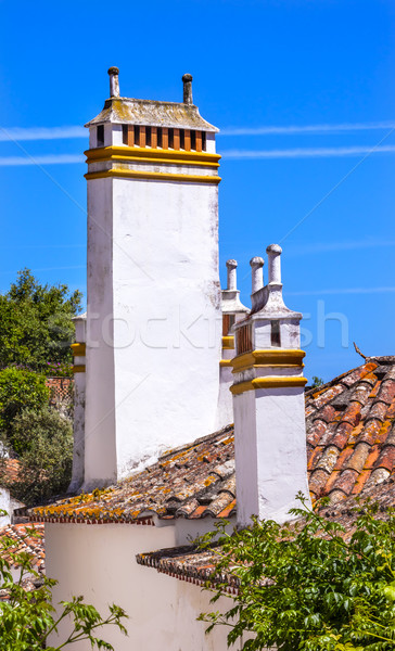 Muren oranje daken Portugal middeleeuwse Stockfoto © billperry