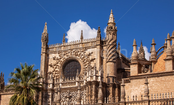 Prince Door Rose Window Seville Cathedral Spain Stock photo © billperry