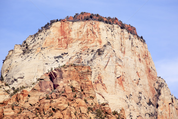 The Sentinel Tower of Virgin Zion Canyon National Park Utah  Stock photo © billperry