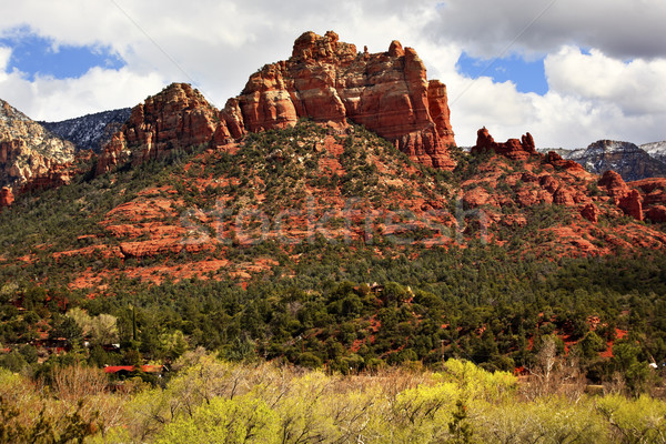 Camel Head Orange Red Rock Butte Sedona Arizona Stock photo © billperry