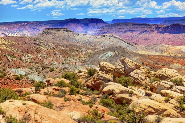 描いた 砂漠 鉄 丘 峡谷 炎のような ストックフォト © billperry