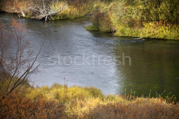 Sunlight River Reflections National Bison Range Charlo Montana Stock photo © billperry