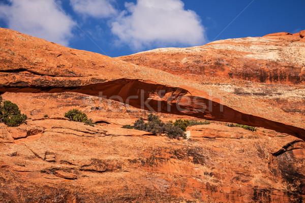 Tájkép ív közelkép kő kanyon kert Stock fotó © billperry
