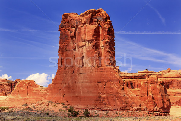 Schapen rotsformatie canyon park Utah Rood Stockfoto © billperry
