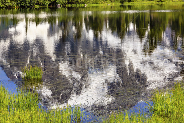 Quadro lago abstrato Washington EUA padeiro Foto stock © billperry