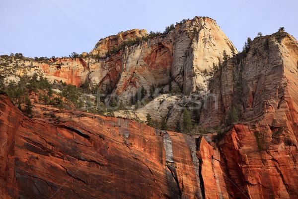 Groene bomen Rood witte canyon muren Stockfoto © billperry