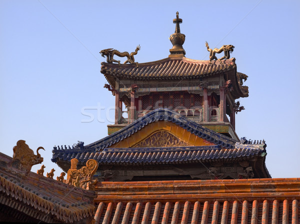 Verboden stad paleis draak Beijing China dak Stockfoto © billperry