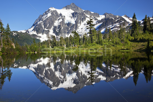 Mirror Image Reflection Lake Mount Shuksan Washington State Stock photo © billperry