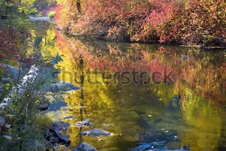 реке Вашингтон 10 2008 Сток-фото © billperry