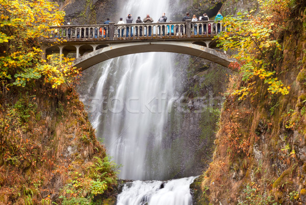 Multnomah Falls Waterfall Columbia River Gorge, Oregon Pacific N Stock photo © billperry